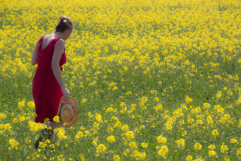 Model in Red in field of yellow