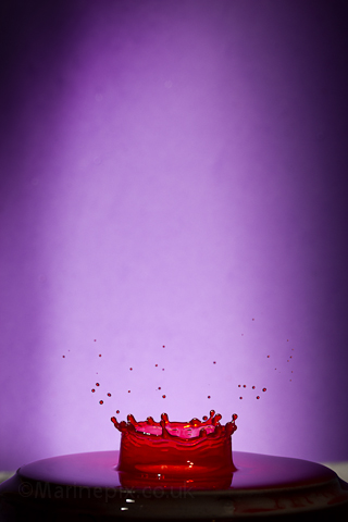 red splash purple background